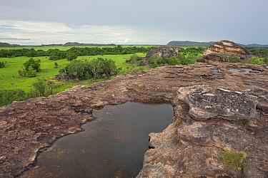 Sandstone plateau with water pool, Kakadu National Park, Australia  -  Ingo Arndt
