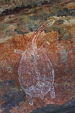Aboriginal rock art of long necked turtle, Kakadu National Park, Australia  -  Ingo Arndt