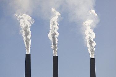 Smoke emerging from power plant stacks, Lake Powell area, Utah  -  Ingo Arndt