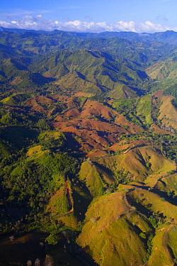 Lowland tropical rainforest cleared for cattle farming, Soberania National Park, Panama  -  Christian Ziegler