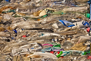 Plastic crushed at recycling plant, Kaikoura, North Canterbury, New Zealand  -  Colin Monteath/ Hedgehog House
