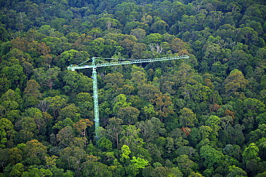 Research crane in the forest which the scientist use to study the canopy, Lambir Hills National Park, Sarawak, Malaysia  -  Christian Ziegler