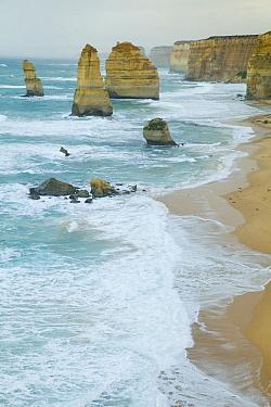 Twelve Apostles limestone stacks, Great Ocean Road, Port Campbell National Park, Victoria, Australia  -  Yva Momatiuk & John Eastcott
