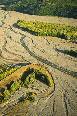 Toutle River cuts through sediments of eruption, Mount St Helens National Volcanic Monument, Washington  -  Kevin Schafer