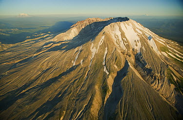 Aerial view of Mount St Helens crater with Mt Adams and Hood behind, Mount St Helens National Volcanic Monument, Washington  -  Kevin Schafer