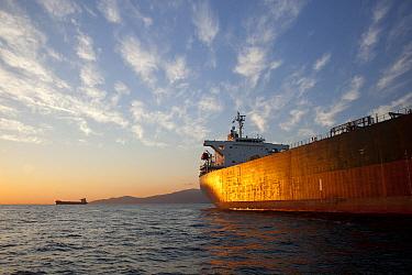 Cargo ships in English Bay, Vancouver, Canada  -  Matthias Breiter