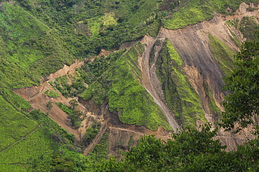 Erosion caused by road construction, Intag Valley, northwest Ecuador  -  Pete Oxford