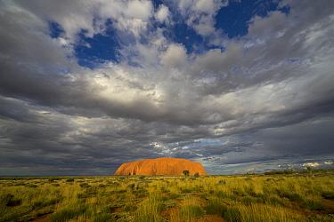 Ayers Rock and storm clouds, Uluru-kata Tjuta National Park, Northern Territory, Australia  -  Yva Momatiuk & John Eastcott