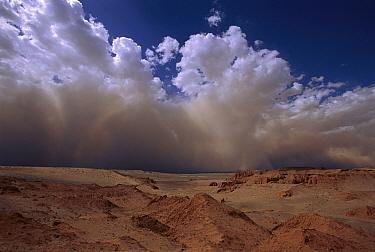 Sandstorm, Gobi Desert, Mongolia  -  Pete Oxford