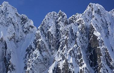 Peaks of Takhinsha Mountains near Haines, Alaska  -  Matthias Breiter