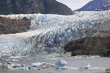 Terminal moraine and glacial lake, Mendenhall Glacier, Juneau, Alaska  -  Matthias Breiter