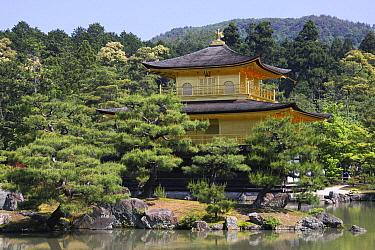 Kinkaku-ji Temple, Kyoto, Japan  -  Hiroya Minakuchi