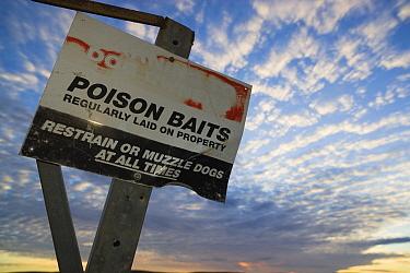 Sign warning people of poison used against dingos, South Australia, Australia  -  Theo Allofs