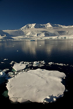 Icefloe near Mount Francais, Anvers Island, Neumayer Channel, Antarctic Peninsula, Antarctica  -  Colin Monteath/ Hedgehog House
