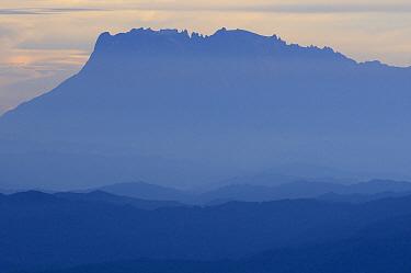 Gunung Kinabalu at sunrise seen from the summit ridge of Gunung Trus Madi, Sabah, Borneo, Malaysia  -  Ch'ien Lee