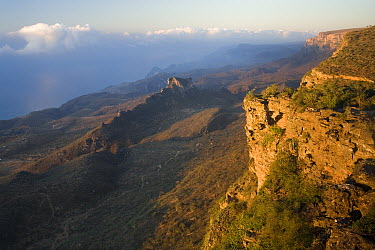 Sandstone cliffs that stop monsoon clouds, allowing for the cloud forest to exist below, Hawf Protected Area, Yemen  -  Sebastian Kennerknecht