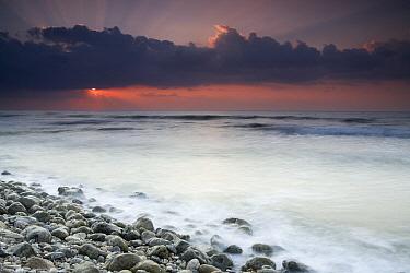 Rocky beach at sunrise, Hawf Protected Area, Yemen  -  Sebastian Kennerknecht