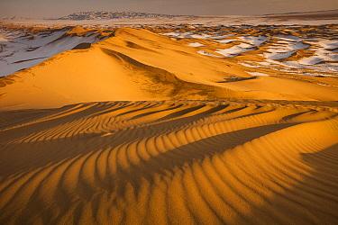 Khongor Sand Dunes in winter, Gobi Desert, Mongolia  -  Colin Monteath/ Hedgehog House