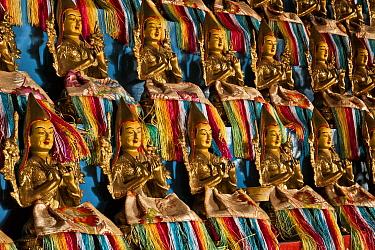 Small golden Buddhas inside Amarbayasgalant Monastery, Selenge, northern Mongolia  -  Colin Monteath/ Hedgehog House