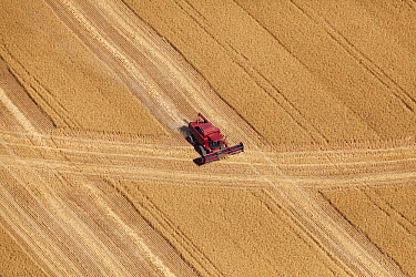 Combine harvester in field, Western Cape, South Africa  -  Richard Du Toit