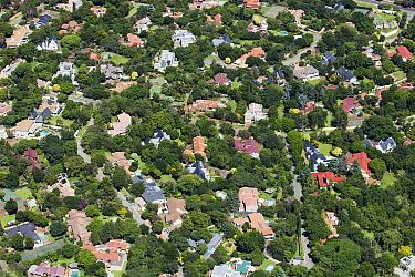 Green suburbs, Sandton, Gauteng, South Africa  -  Richard Du Toit