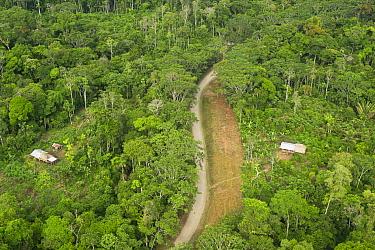 Maxus Road, originally an oil road and buildings showing colonization of rainforest, Yasuni National Park, Amazon, Ecuador  -  Pete Oxford