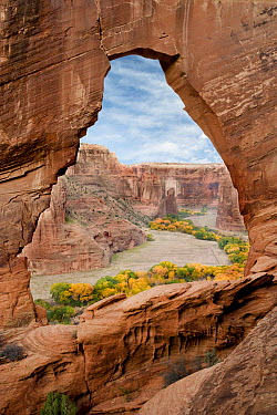Natural arch with river valley in the background, Canyon de Chelly National Monument, Arizona  -  Tom Vezo