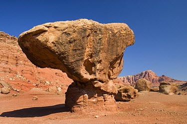 Lee's Ferry rock formation, Arizona  -  Tom Vezo
