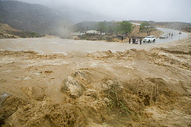 Flash flood during heavy rain storm, partially caused by the deforestation on escarpment, Hawf Protected Area, Yemen  -  Sebastian Kennerknecht