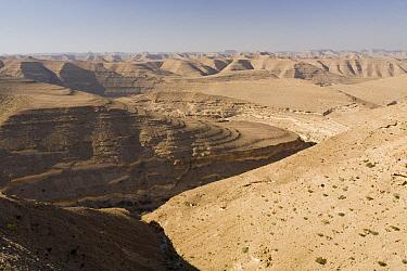 Valleys in sandstone desert, Hawf Protected Area, Yemen  -  Sebastian Kennerknecht