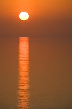 Sunrise over Arabian Sea, Hawf Protected Area, Yemen  -  Sebastian Kennerknecht
