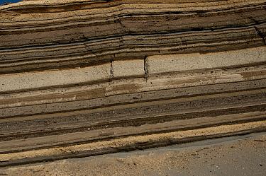 Layers of earth from past volcanic eruptions, Chimborazo Volcano, Ecuador  -  Murray Cooper