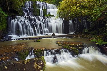 Purakaunui Falls, Catlins, South Island, New Zealand  -  Stephen Belcher