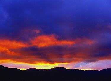 Sunrise, Hokkaido, Japan  -  Masami Goto/ Nature Production