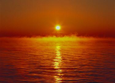 Steam rising off water at sunrise, Hokkaido, Japan  -  Masami Goto/ Nature Production