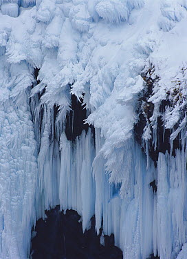Furepe Falls frozen, Shiretoko National Park, Hokkaido, Japan  -  Masami Goto/ Nature Production