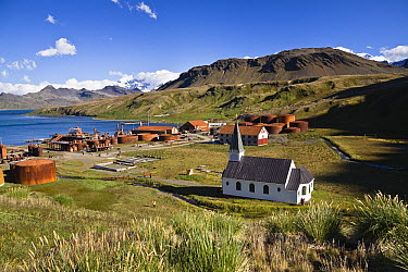 Former whaling station Grytviken, King Edward Cove, South Georgia Island  -  Konrad Wothe