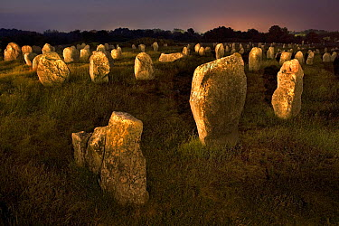 Standing stones at night, Carnac, Brittany, France  -  Jim Brandenburg