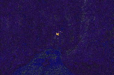 Couple walking, Minnesota  -  Jim Brandenburg