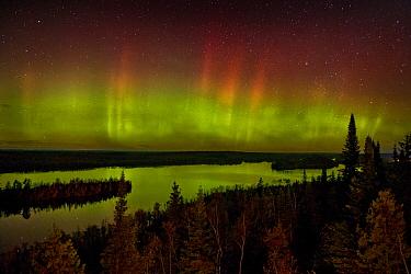 Aurora borealis over Moose Lake, Boundary Waters Canoe Area Wilderness, Minnesota  -  Jim Brandenburg