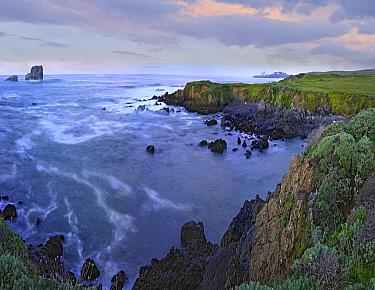 Coastal cliffs, Point Piedras Blancas, California  -  Tim Fitzharris