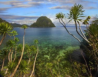 Cadlao Island near El Nido, Palawan, Philippines  -  Tim Fitzharris