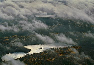 Island in the Fog, Northwoods, Minnesota  -  Jim Brandenburg