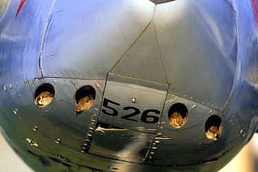 House Sparrow (Passer domesticus) group nesting in fighter jet, Switzerland  -  Jean-Luc & Francoise Ziegler/ Bi