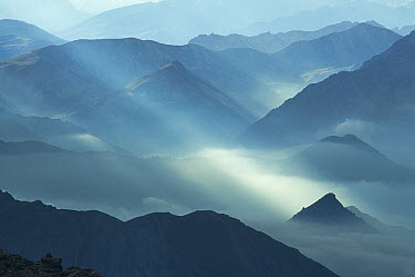 Mist over mountains, Piedmont, Italy  -  Christophe Sidamon-Pesson/ Biosp