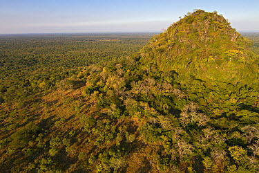 Inselberg rock formations rising from the rainforest, Gorongosa National Park, Mozambique  -  Piotr Naskrecki