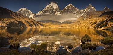 Siula Grande, Yerupaja, Yerupaja Chico and Jirishanca peaks emerge from morning cloud with reflections in Carhuacocha Lake, Cordillera Huayhuash, Andes, Peru  -  Colin Monteath/ Hedgehog House
