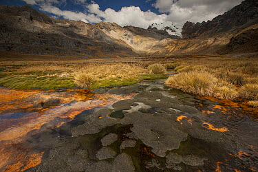 Chemicals leaking from old gold mine cause orange colored mud in swamp, Cashapampa Valley, Cordillera Huayhuash, Andes, Peru  -  Colin Monteath/ Hedgehog House