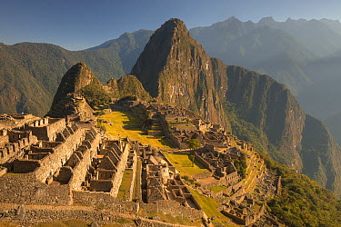 Machu Picchu at dawn above Urubamba Valley near Cuzco, Peru  -  Colin Monteath/ Hedgehog House