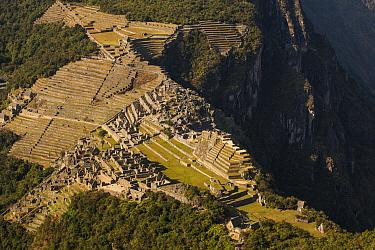 Machu Picchu above Urubamba Valley, view from Huayna Picchu peak near Cuzco, Peru  -  Colin Monteath/ Hedgehog House